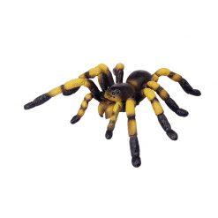 4D Puzzle Összerakható állatfigura | Tarantula