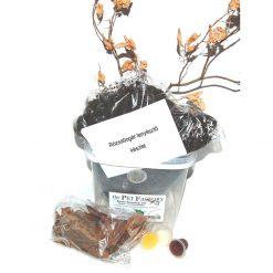 Rózsabogár tenyésztő készlet
