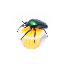 BeetleJelly - Bogárzselé - Mangó