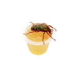 BeetleJelly - Bogárzselé - Méz