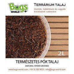 Bugs-World Spider Ground Természetes pók talaj | 2L