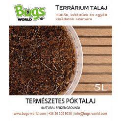 Bugs-World Spider Ground Természetes pók talaj | 5L