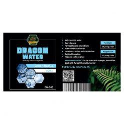 DragonOne Dragon Water Természetes forrásvíz + Ca és Mg | 500 ml