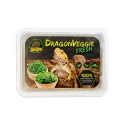 DragonOne DragonVeggie Zöldség magkeverék   Teknős agáma leguán