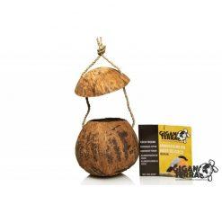 GigaBird Coconut Beruk 317 Kókuszdió bújóka
