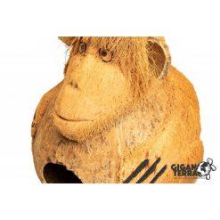 GiganTerra Monkey Coconut Shelter Kókuszdió bújóka majom