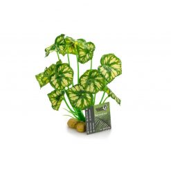 GiganTerra Zöld-sárga tarka levelű talpas műnövény
